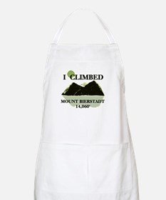 I Climbed Mount Bierstadt Apron