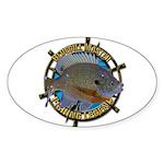 Bluegill Master Sticker (Oval 50 pk)