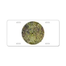 Spider in a web 9R030D-015 Aluminum License Plate