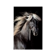 Chocolate Rocky Mtn Horse Rectangle Magnet