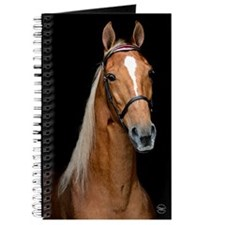 Sorrel Horse Journal