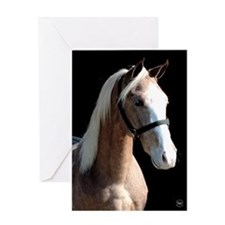 Red Roan Dun Horse Greeting Card