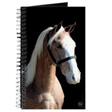 Red Roan Dun Horse Journal
