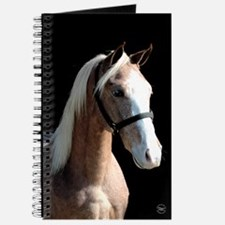 Red Roan Dun Horse Journal
