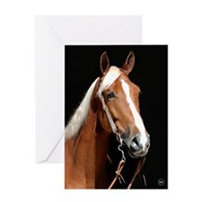 Chestnut Horse Greeting Card