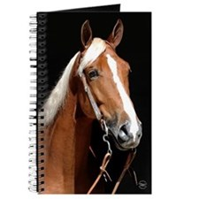 Chestnut Horse Journal