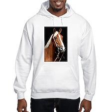 Chestnut Horse Hoodie