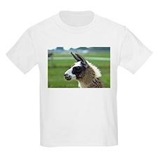 Patchwork Brown Llama T-Shirt