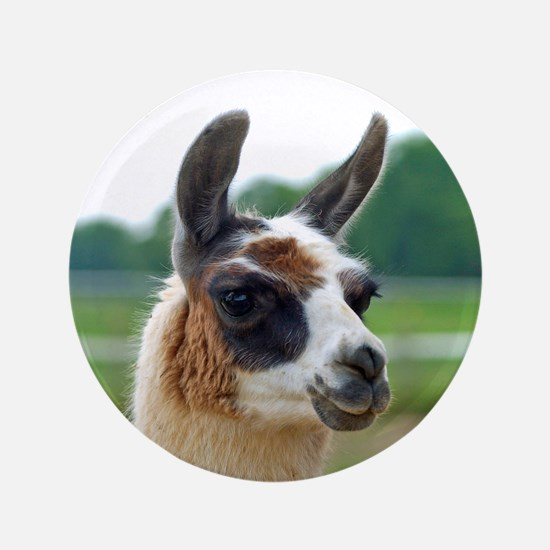"Spotted Llama 3.5"" Button (100 pack)"