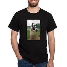 Spotted Llama T-Shirt