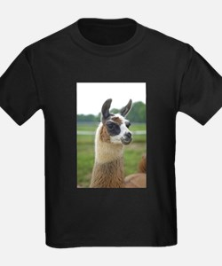 Spotted Llama T