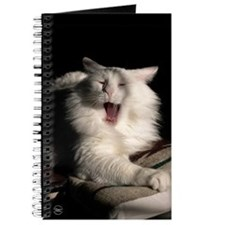 Tired Cat Journal