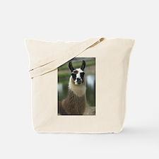 Brown and White Llama Tote Bag