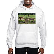 Llama Trio Hoodie