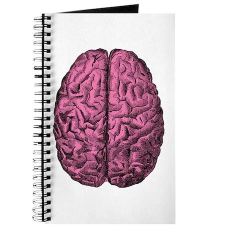 Human Anatomy Brain Journal
