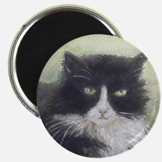 Julio the Cat Magnet