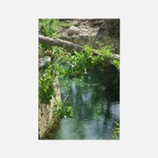 River at Xcaret Rectangle Magnet