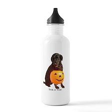 trick or treat Sports Water Bottle