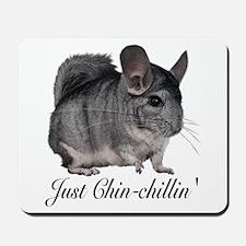 Just ChinChillin' Mousepad