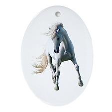 Fabuloso Ornament (Oval)