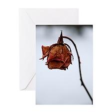 """""""February Rose II"""" Greeting Card"""