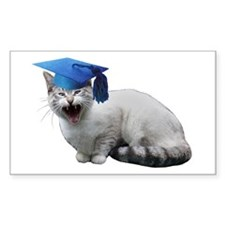 Cat Graduation Decal