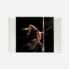 Funny Pole dancing Rectangle Magnet