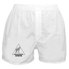 Modern Army Combatives Instructor Boxer Shorts