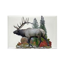 Bull Elk Rectangle Magnet