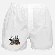 Bull Elk Boxer Shorts