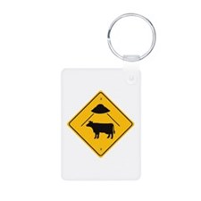 UFO COW ABDUCTION / Keychains
