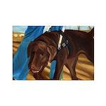 Guide Dog Jack - Rectangle Magnet