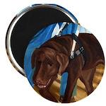 Guide Dog Jack - Magnet