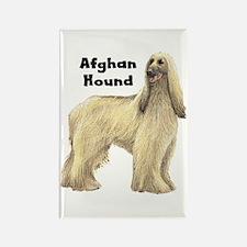 Afghan Hound Rectangle Magnet