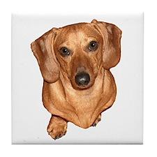 Tiger Dachshund Dog Tile Coaster