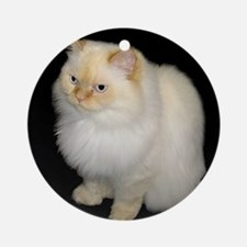 Zeus the White Himalayan Cat  Ornament (Round)