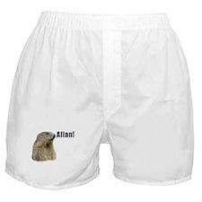 Allan! Boxer Shorts