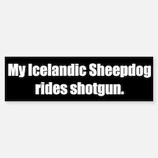 My Icelandic Sheepdog rides shotgun