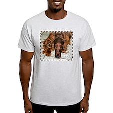 Irish Setters Ash Grey T-Shirt