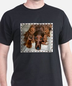 Irish Setters Black T-Shirt