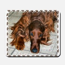 Irish Setters Mousepad