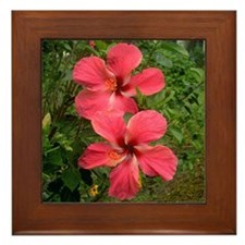 Twin Hibiscus Framed Tile