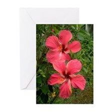 Twin Hibiscus Greeting Cards (Pk of 10)