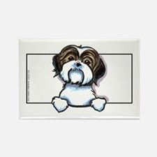 Brown/W Shih Tzu Peeking Rectangle Magnet