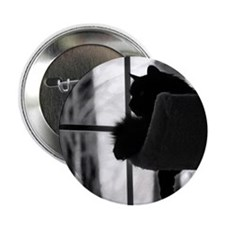 "Kitty in the Window 2.25"" Button (10 pack)"