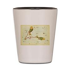 Vintage Celestial Zodiac, Pisces Shot Glass