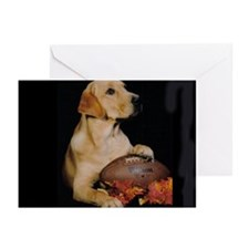 Fall Football Lab Greeting Cards (Pk of 10)