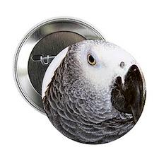 Congo African Grey Button