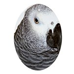 Congo African Grey Oval Ornament