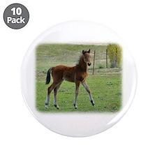 "Foal 9P030D-197 3.5"" Button (10 pack)"